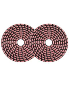 "4"" Dongsin Cactus G Dry Polishing Pads"